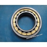 NSK Single-Row Cylindrical Roller Bearing (NU220 NU220E NU220EM)