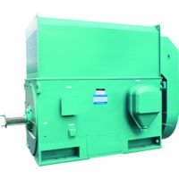 Top Grade High Voltage Simo 3000rpm 220kw Electric Motor for Crusher