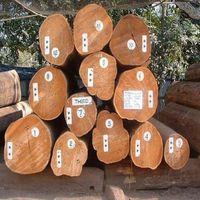 oak logs, pine logs & chips thumbnail image