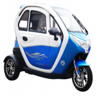 Electric Tricycle with CE EEC certification