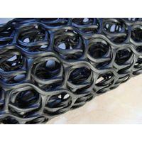 Black HDPE Drainage Geonet