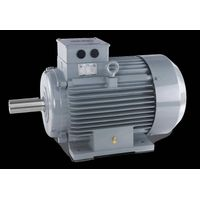 AC Electric Induction Motor
