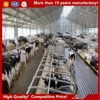 Low cost easy assemble beautiful Prefabricated Farm Cow Shed Building Cattle Shed