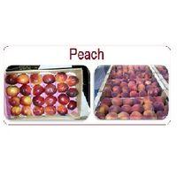 Peach thumbnail image