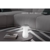 Mushroom power bank with led lampshade
