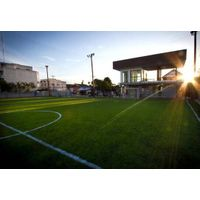Artificial grass for sports field high quality PE material