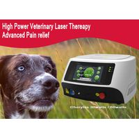 Veterinary Chiropractic Veterinary Surgical Laser
