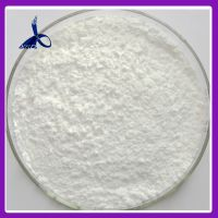 Local Anesthetic Powder Dyclonine hydrochloride / Dyclonine HCl CAS 536-43-6 thumbnail image