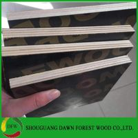 18mm poplar core film faced marine plywood for construction