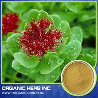 Rhodiola rose extract