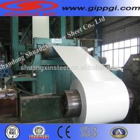 Color coated steel sheet in coils PPGI