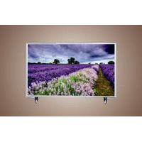 "Newest 50"" Widescreen Full HD Color Television (Z50B)"