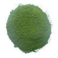 2015 chlorella season low price organic chlorella powder