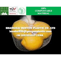 ECO Friendly Biodegradable Fruit Vegetable Packing Mesh Net Bag