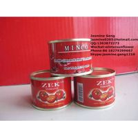 70g-3000g Chinese good quality canned tomato paste 28-30%