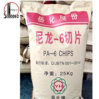 Nylon 6 chips/PA6