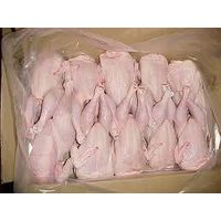 Halal chicken.frozen halal chicken.whole frozen chicken .,Paw&Feet competitive prices !!! thumbnail image
