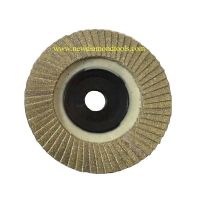 Diamond Abrasive Flap Disc