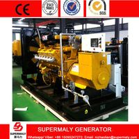 Hot Sale 300KW 375KVA Natural Gas Generator set with low gas consumption