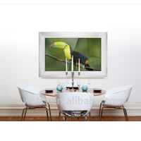 Hot Sale Living Room 42'' Wooden Frame Mirror TV With Top Quality
