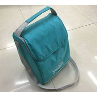 Customized 210D polyester insulated cooler bag manufacture