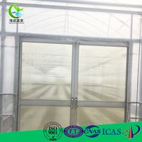China Supply green house tunnel vegetable film greenhouse