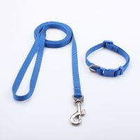 China Factory Wholesale Customized Puppy Collar and Leash With Breakaway Buckle