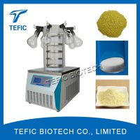 Manifold Type Lab Freeze Dryers For Sale, China Vacuum Freeze Drying Equipment Manufacturer