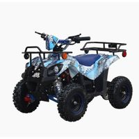 MZYR 49CC 4 Wheeler Mini Quad ATV For Kids Cheap