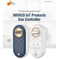 Smart gas safety system