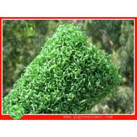 Artificial Grass | Synthetic Lawns | Putting Greens thumbnail image