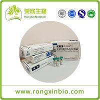 Hot sale Jintropin HGH Injectable Human Growth Hormone 100iu / Kit For Muscle Growth