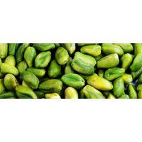 Green Pistachio Kernel thumbnail image