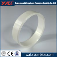 technical ceramic seal ring