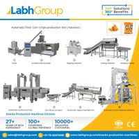 Labh Group Automatic Fried Corn Chips production line machines