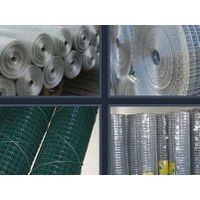 China supplier welded wire mesh (factory price)