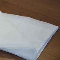Plain Fabric Woven by 500den Filament Fiber PTFE Scrim Fiber thumbnail image