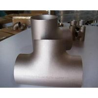 A403 F316L Butt Welding Stainless Pipe Fittings Tee