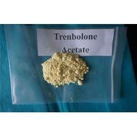 Steroid Powder Trenbolone Acetate 10161-34-9
