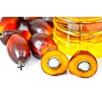 RDB Crude Palm Oil