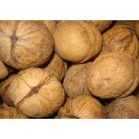 indian inshell walnuts thumbnail image