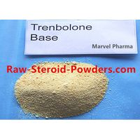 Performance Improvement Hormone Supplement Testosterone Base Steroid Hormones Powder 58-22-0
