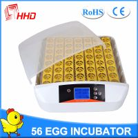 HHD CE Certificate Full Automatic Egg Incubator for Sale