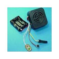 Motion Sensor Voice Module