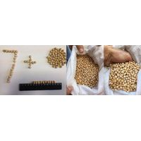 Chickpea 6...7 mm
