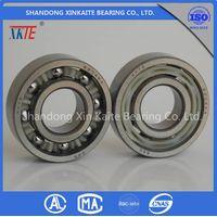High Quality XKTE Conveyor Roller Bearing 6204 TN/TN9/C3/C4 from china bearing Manufacturer thumbnail image