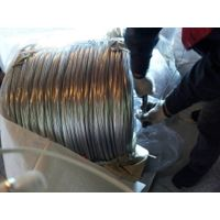 hot dipped galvanized iron wire (GI wire)