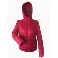 high fashion womens clothing battery operated hoodie women winter jacket