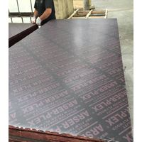 film faced plywood,commercial plywood, blockboard, melamine and veneer MDF