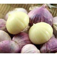 Yunnan solo garlic